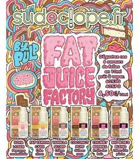 Flacon E Liquide Coconut Puff de Fat Juice Factory par PULP